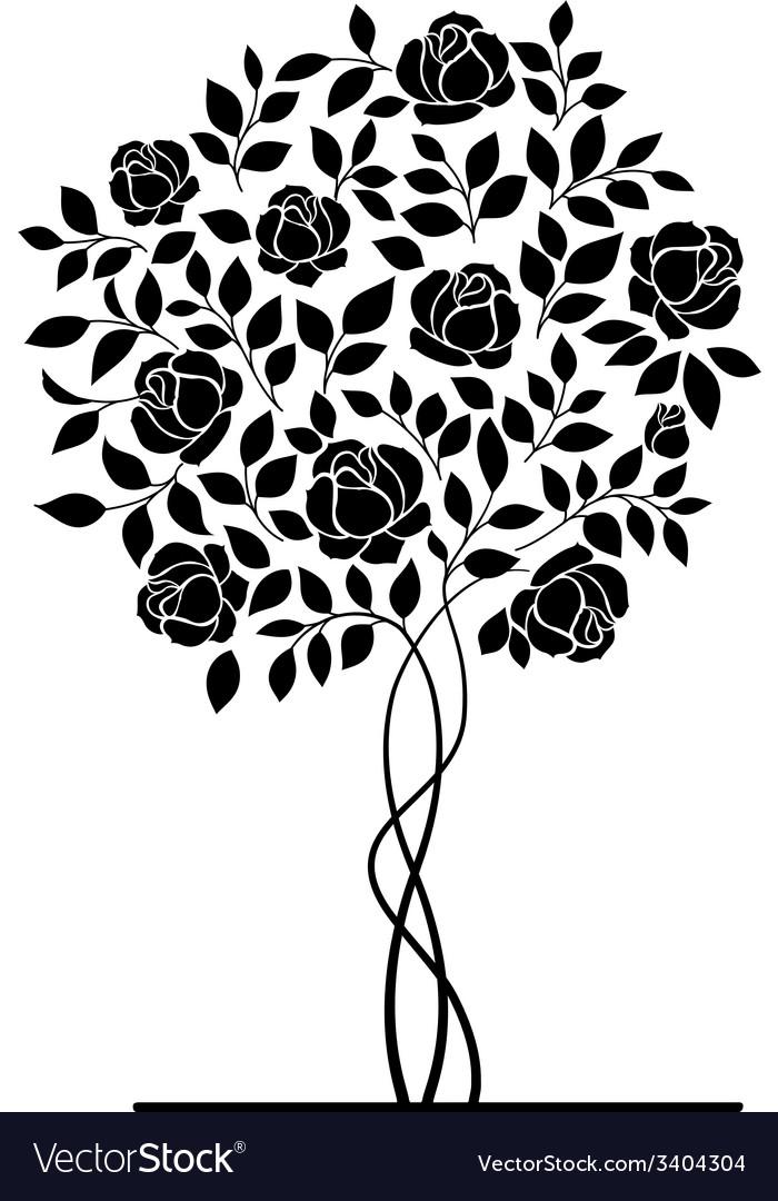 Rose bush vector | Price: 1 Credit (USD $1)