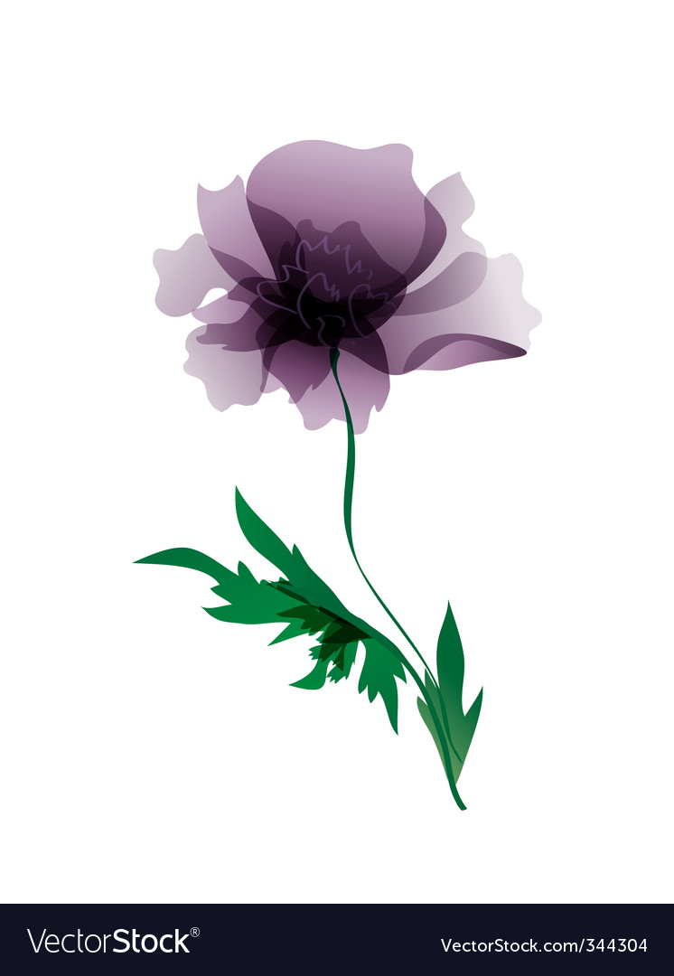 Violet peony flower vector | Price: 1 Credit (USD $1)