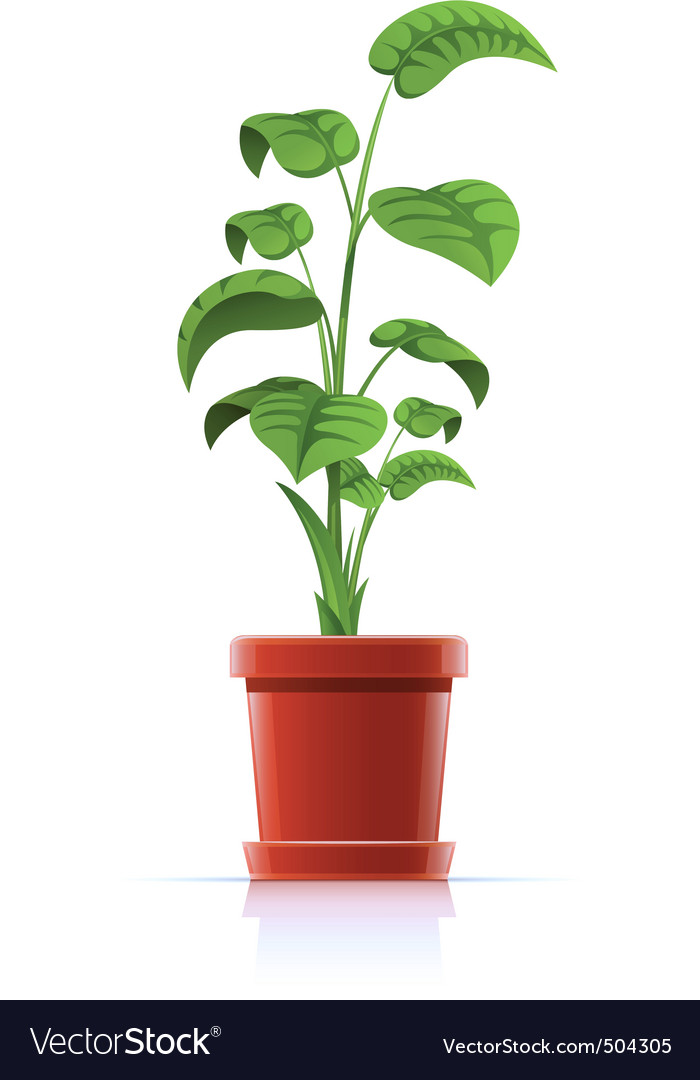Plant in flowerpot vector | Price: 3 Credit (USD $3)