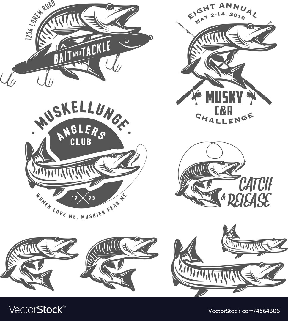 Musky fishing design elements vector   Price: 1 Credit (USD $1)