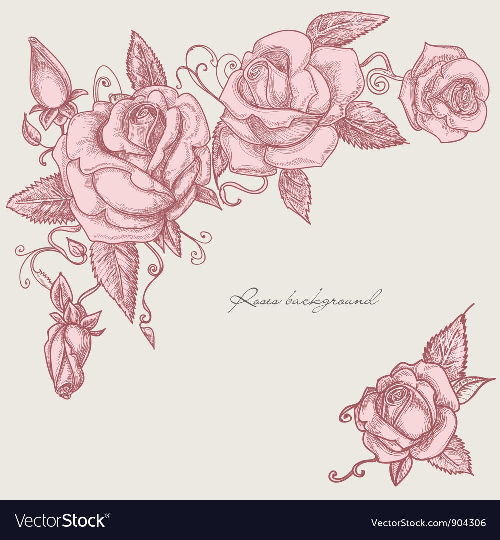 Roses corner ornaments vector | Price: 1 Credit (USD $1)