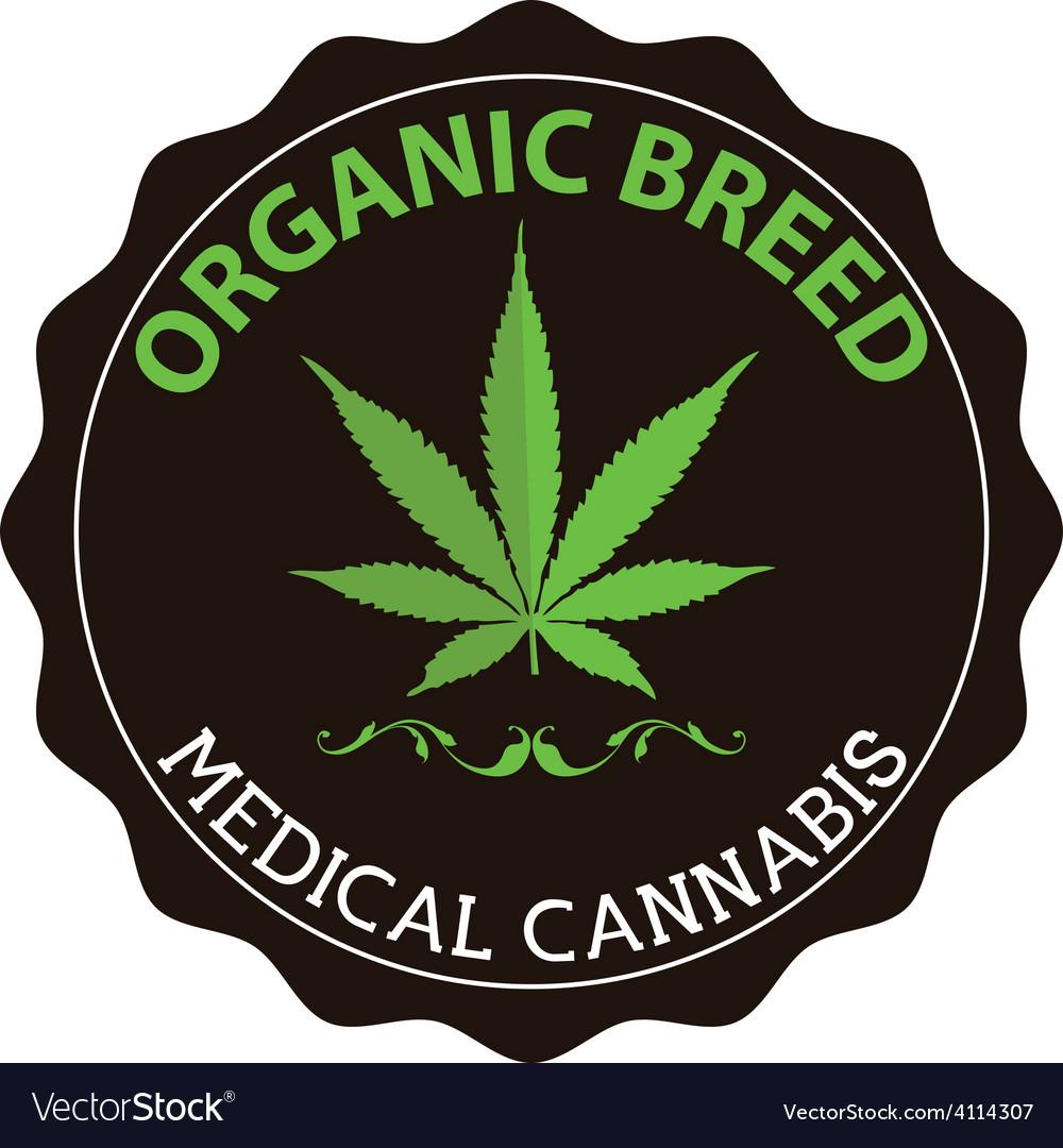 Organic medical canibus emblem vector | Price: 1 Credit (USD $1)