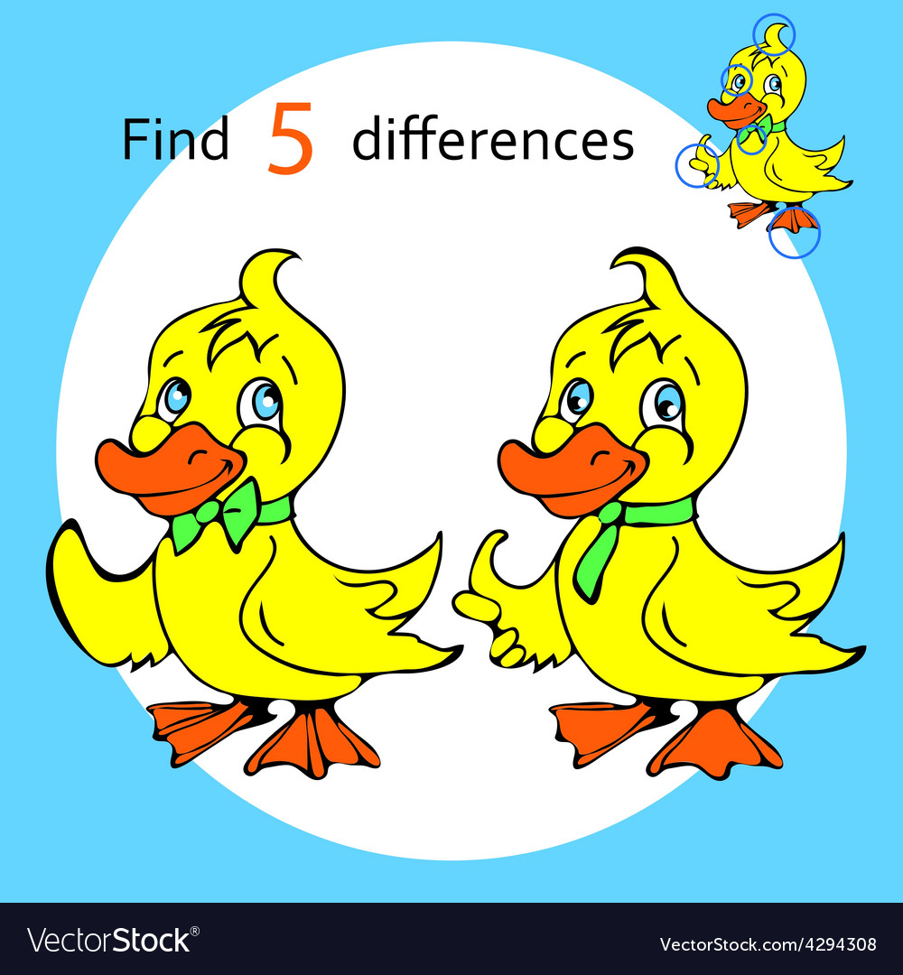 Find five differences duck vector | Price: 1 Credit (USD $1)