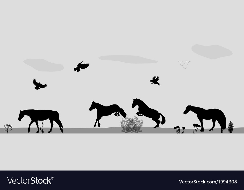 Horses jumping birds fly in nature vector | Price: 1 Credit (USD $1)