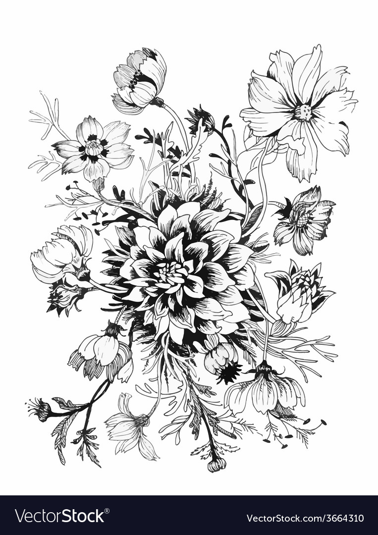 Beautiful painted flower sketch vector | Price: 1 Credit (USD $1)