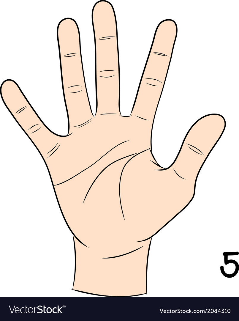 Sign language number 5 vector | Price: 1 Credit (USD $1)
