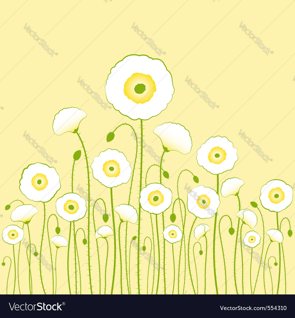 White poppy vector | Price:  Credit (USD $)