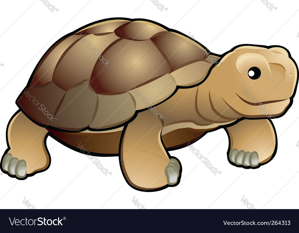 Tortoise vector | Price: 1 Credit (USD $1)