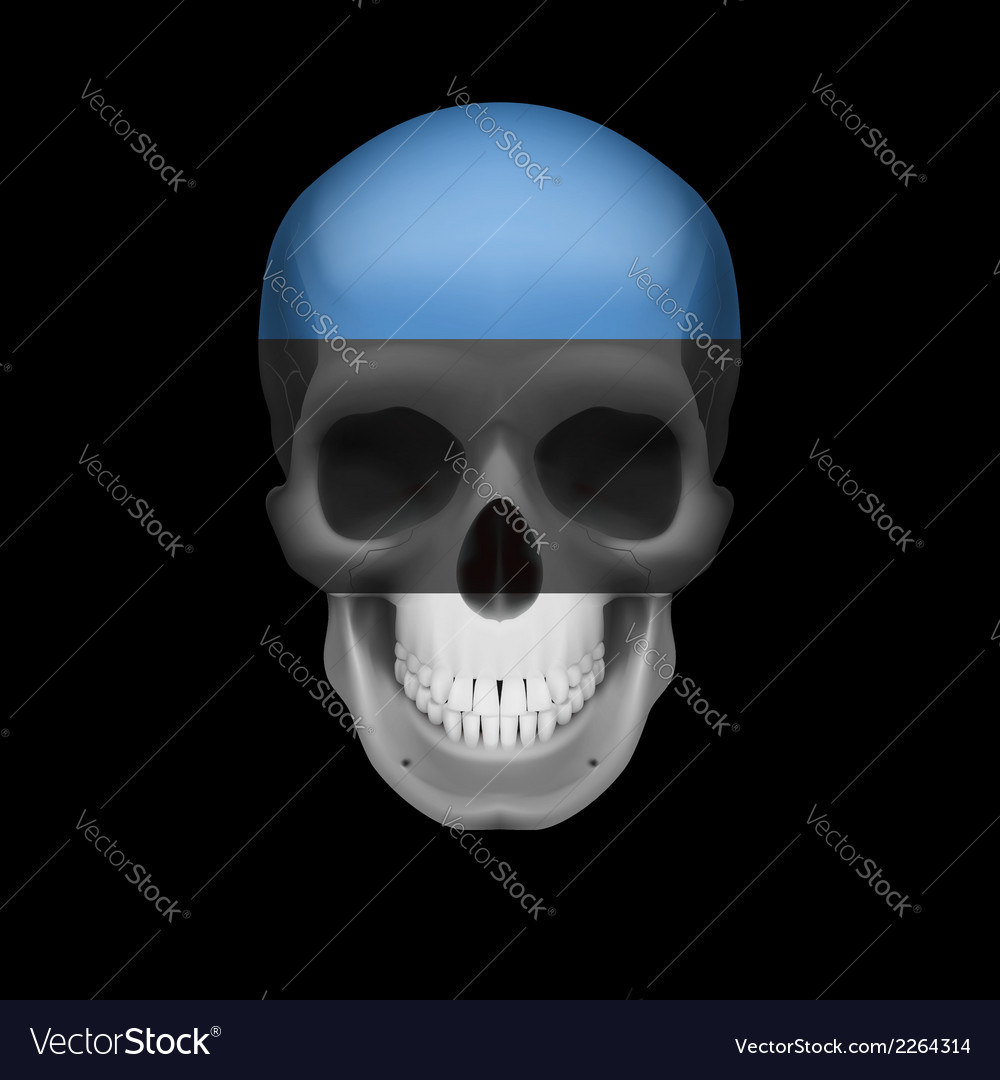 Estonian flag skull vector | Price: 1 Credit (USD $1)