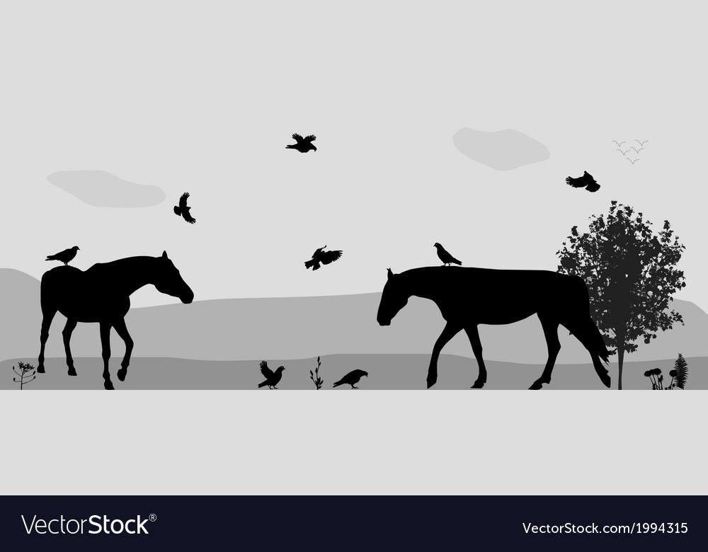 Coney walk birds fly in nature vector | Price: 1 Credit (USD $1)