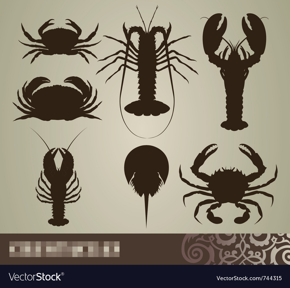 Crustacean set vector | Price: 1 Credit (USD $1)