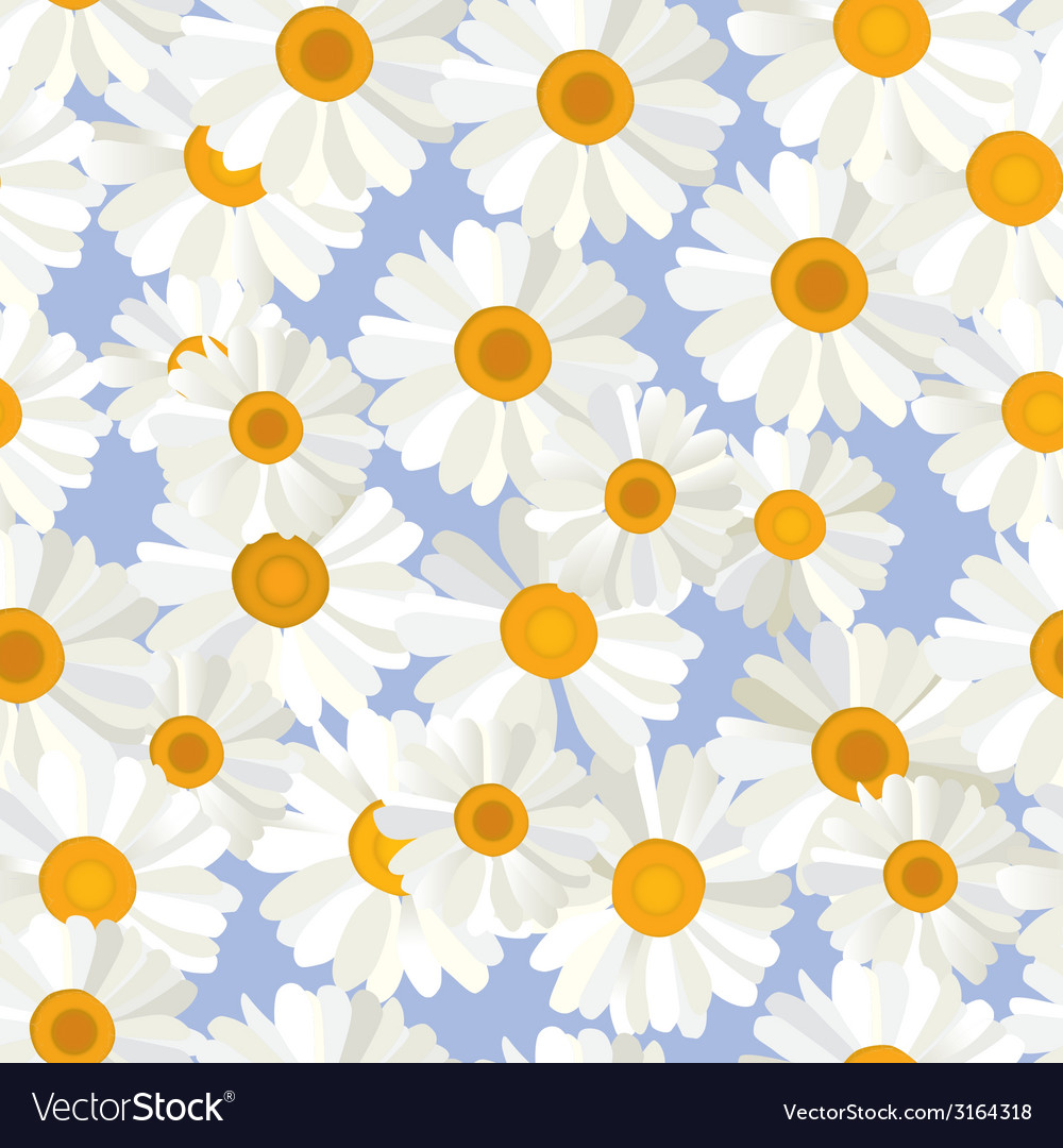Seamless camomiles pattern vector | Price: 1 Credit (USD $1)