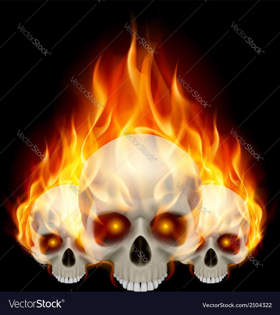 Three flaming skulls vector | Price: 1 Credit (USD $1)