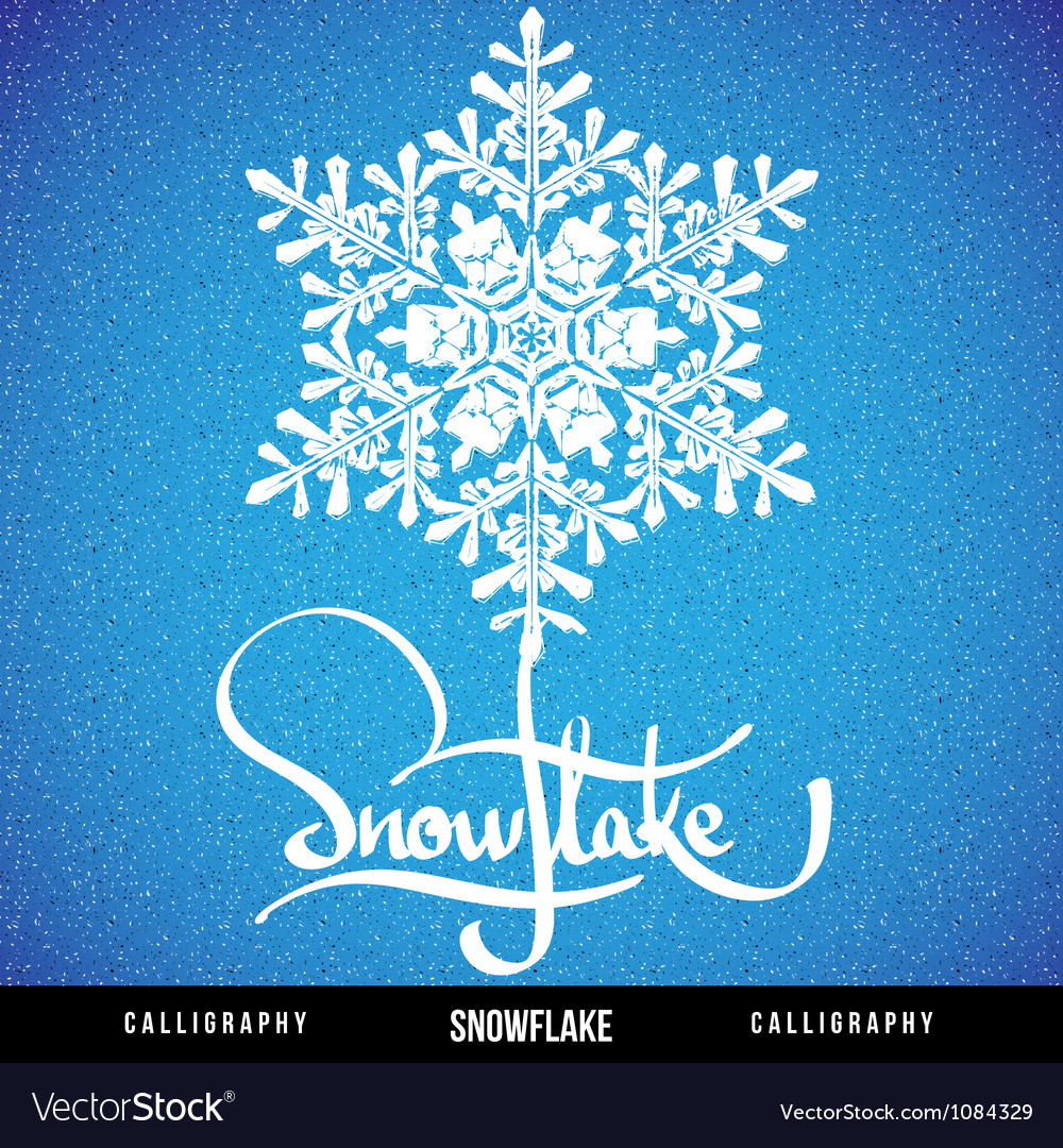 Natural christmas snowflake vector | Price: 1 Credit (USD $1)