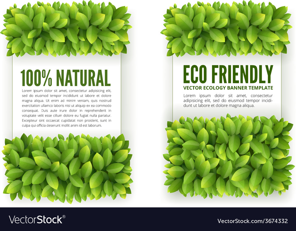 Banners with green leaves vector | Price: 1 Credit (USD $1)