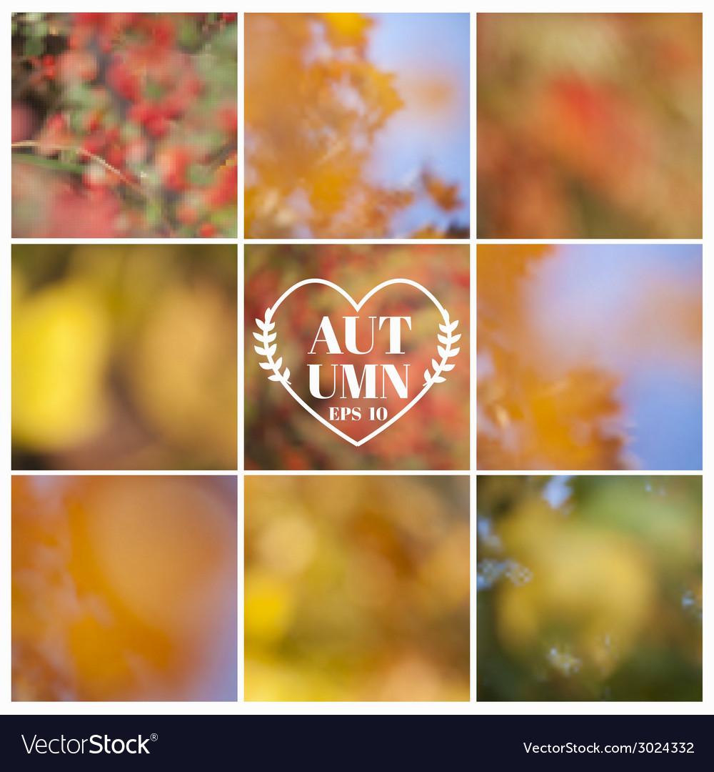 Set autumn backgrounds - 9 beautiful patterns vector | Price: 1 Credit (USD $1)