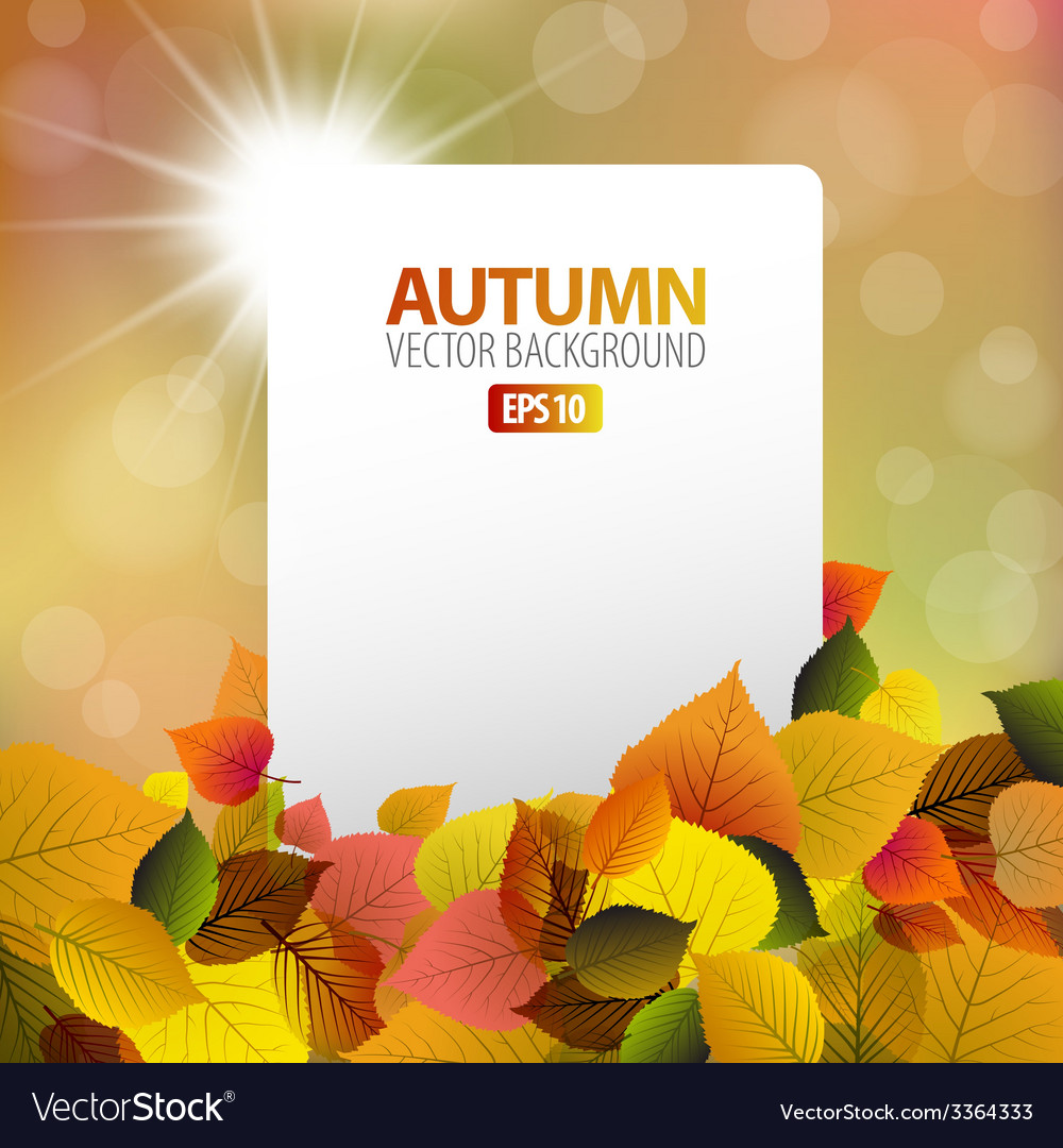 Autumn background with white card vector | Price: 1 Credit (USD $1)