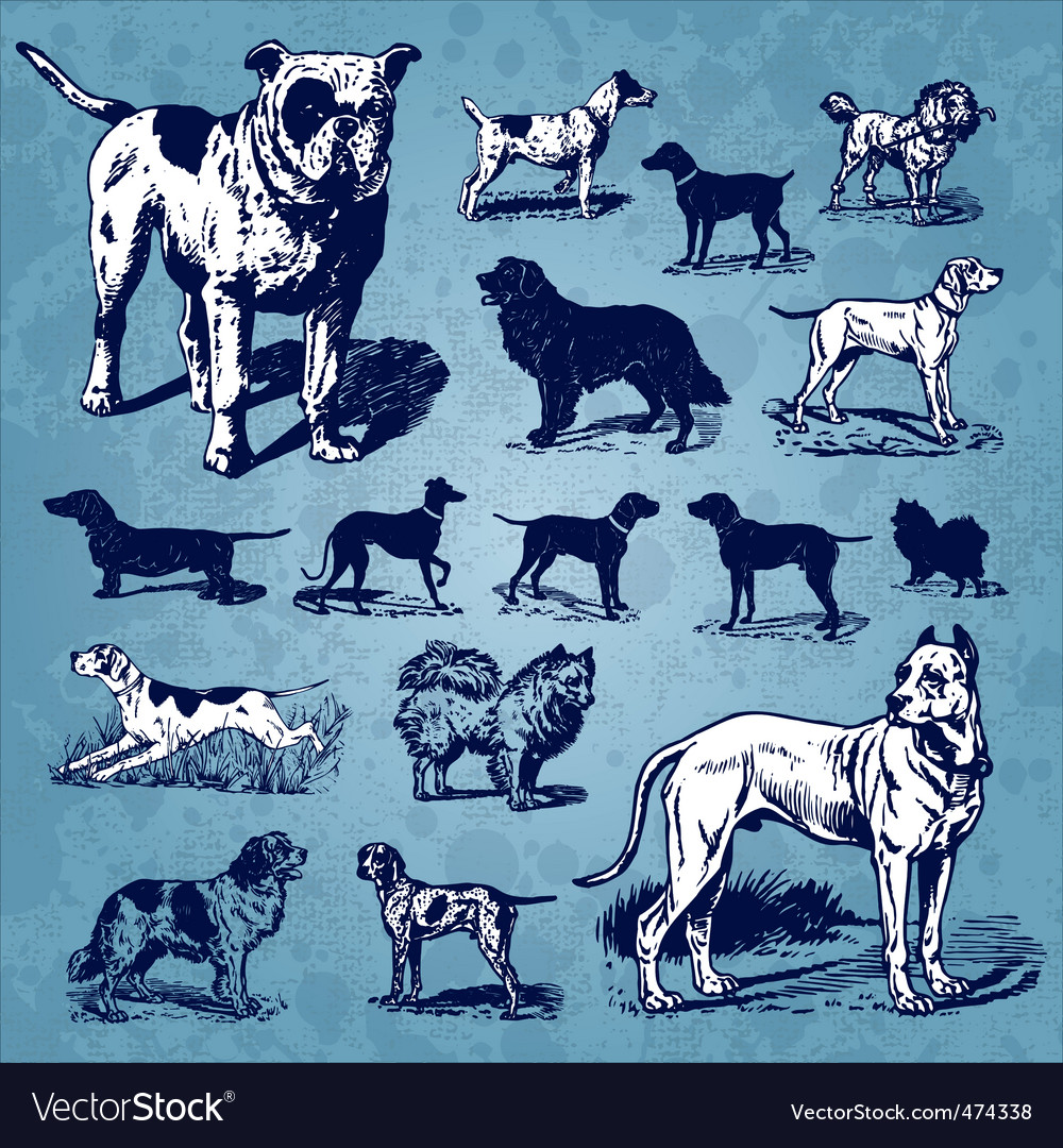 Dogs vintage set vector | Price: 3 Credit (USD $3)