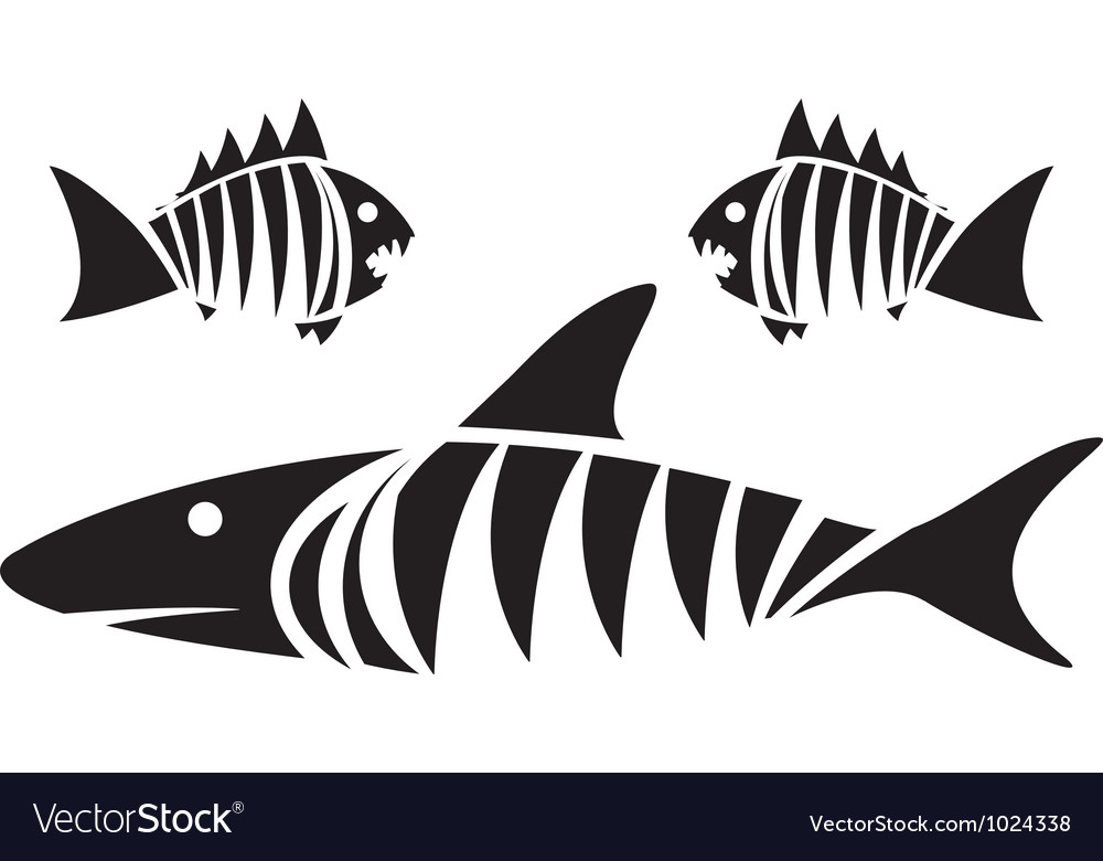 Tiger shark and piranhas vector