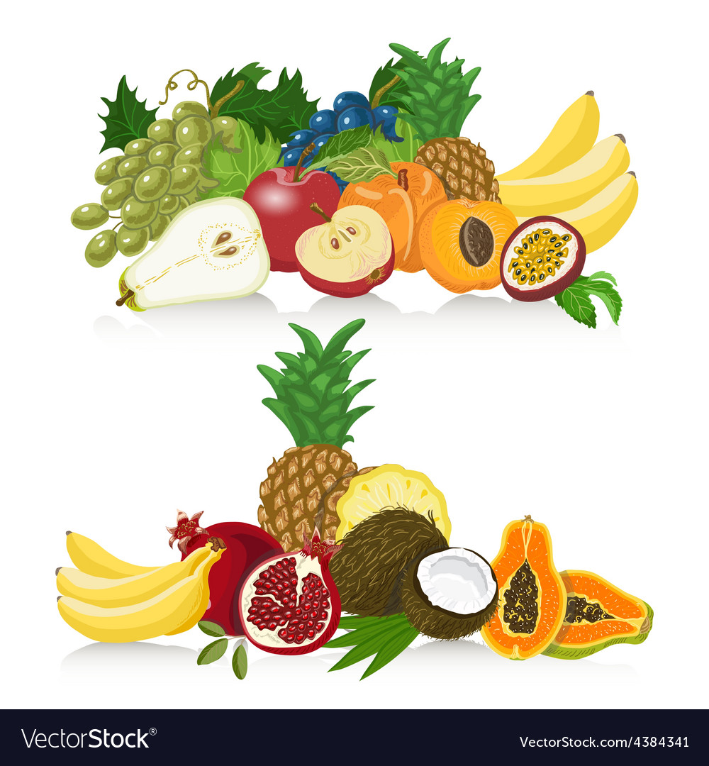 Set of fresh healthy fruit healthy lifestyle vector | Price: 1 Credit (USD $1)
