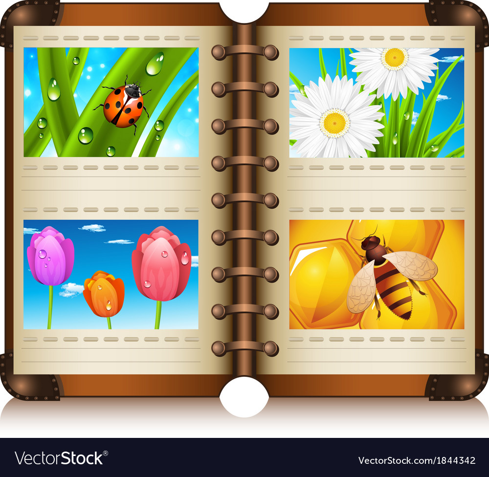 Album vector | Price: 3 Credit (USD $3)