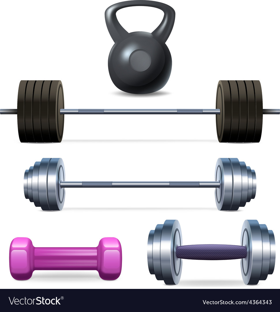Dumbbells barbells and weight vector | Price: 1 Credit (USD $1)