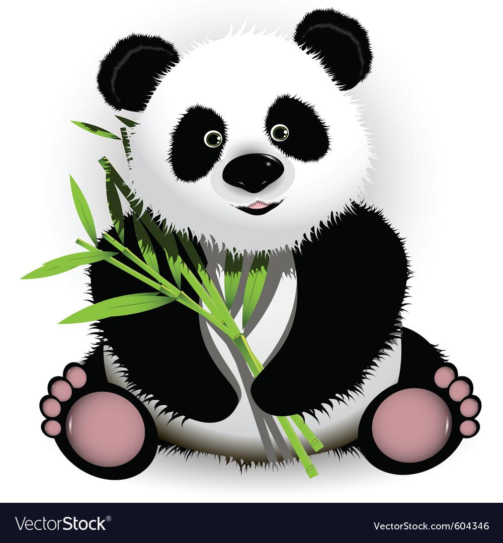 Panda vector | Price: 3 Credit (USD $3)