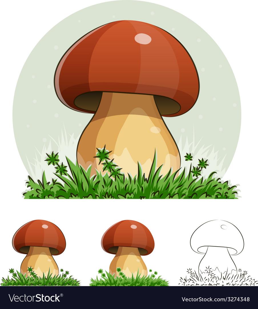 Cep mushroom vector | Price: 3 Credit (USD $3)