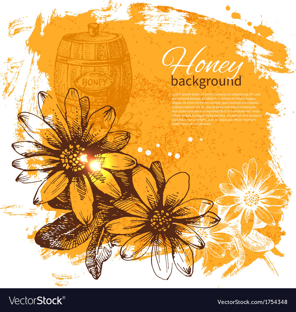 Hand drawn sketch honey background vector | Price: 1 Credit (USD $1)