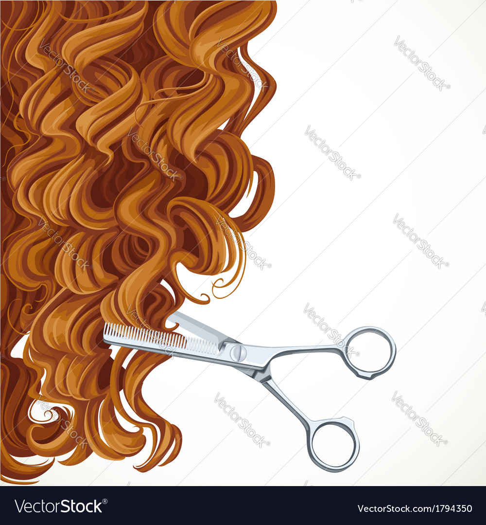 Background with scissors equals curly brown hair vector | Price: 1 Credit (USD $1)