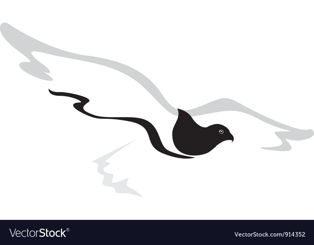 Hawk vector | Price: 1 Credit (USD $1)