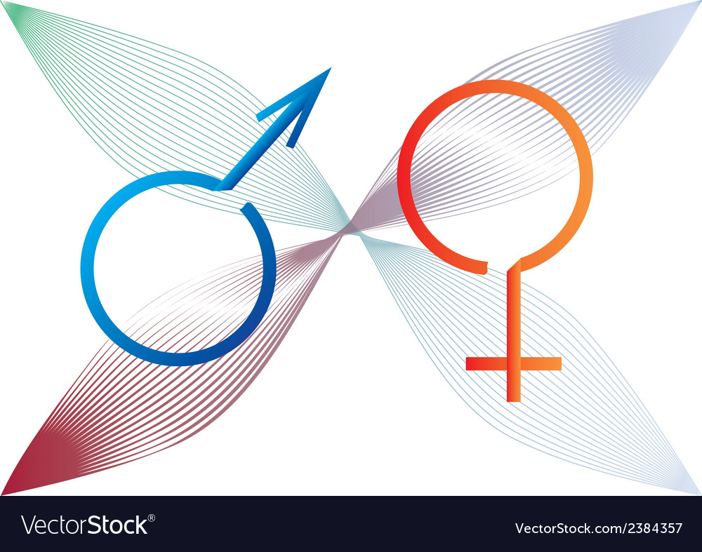 Two gender signs created from ribbon vector | Price: 1 Credit (USD $1)