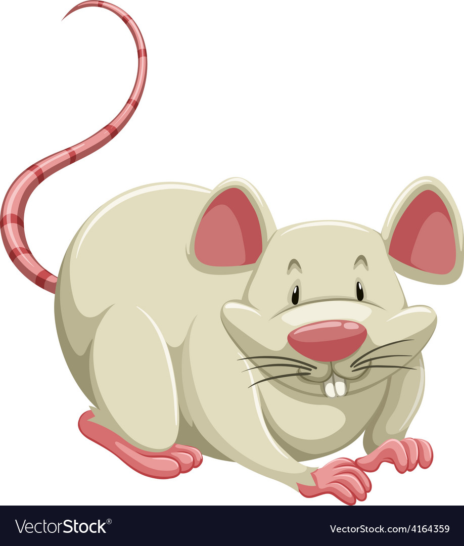 White mouse vector   Price: 1 Credit (USD $1)