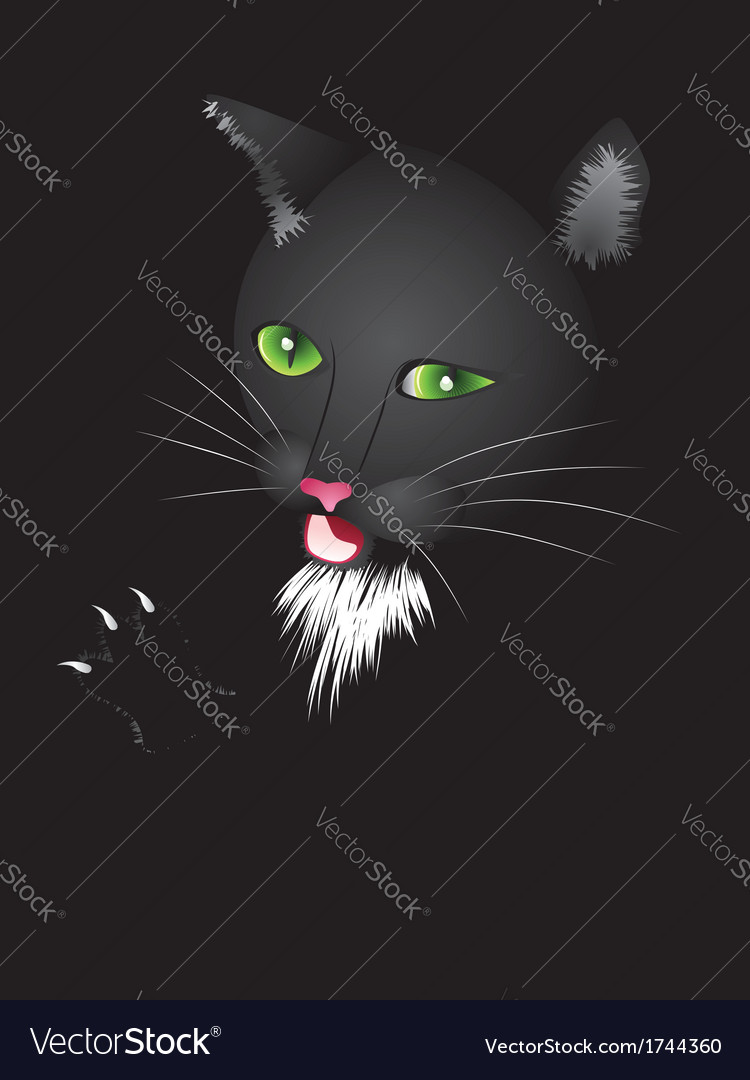 Funny cartoon black cat vector | Price: 1 Credit (USD $1)