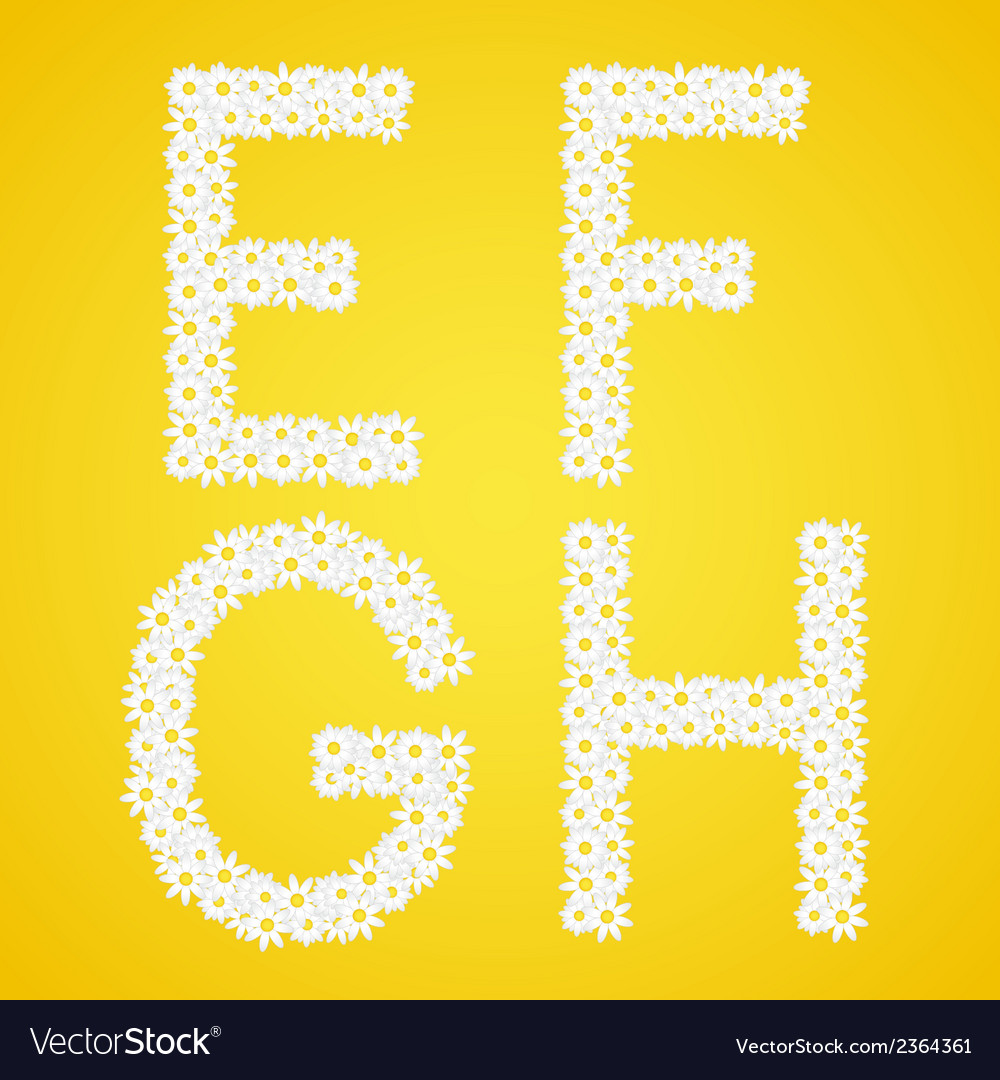 Letters efgh composed from daisy flowers complete vector | Price: 1 Credit (USD $1)