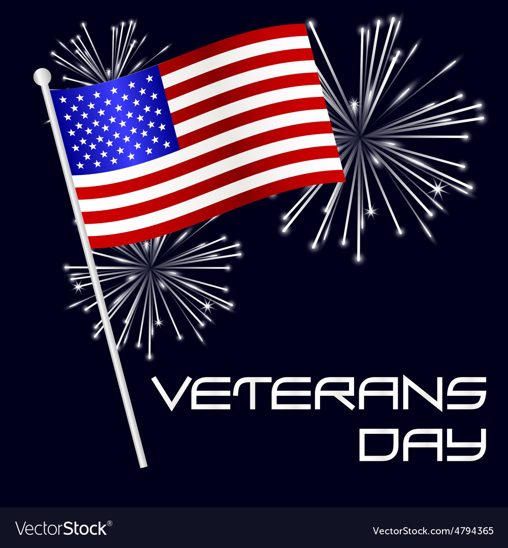 American veterans day celebration with flag and vector
