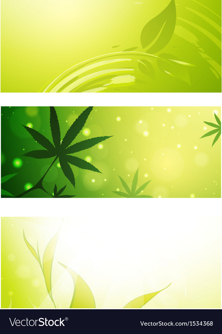 Eco banner set vector | Price: 1 Credit (USD $1)