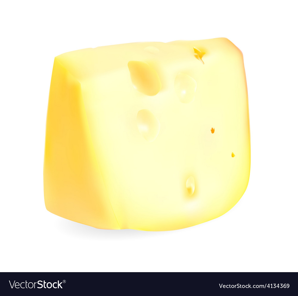 Realistic cheese vector | Price: 1 Credit (USD $1)