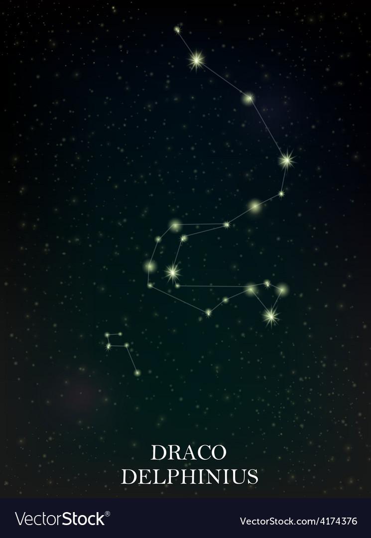 Draco and delphinius constellation vector | Price: 1 Credit (USD $1)
