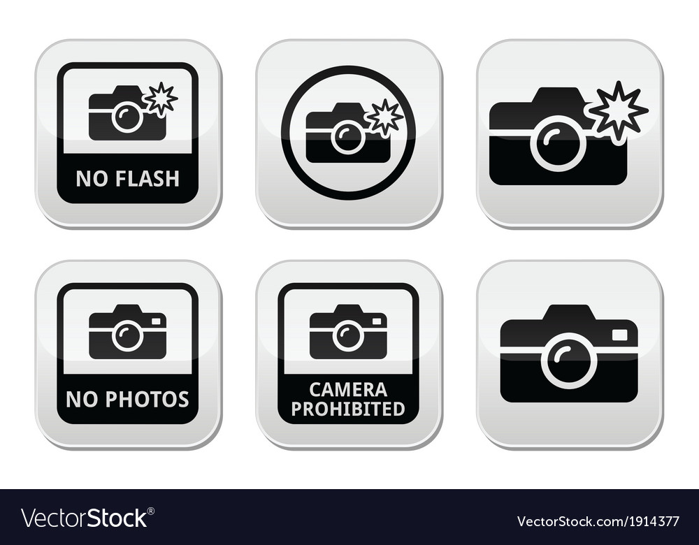 No photos no cameras no flash buttons vector | Price: 1 Credit (USD $1)