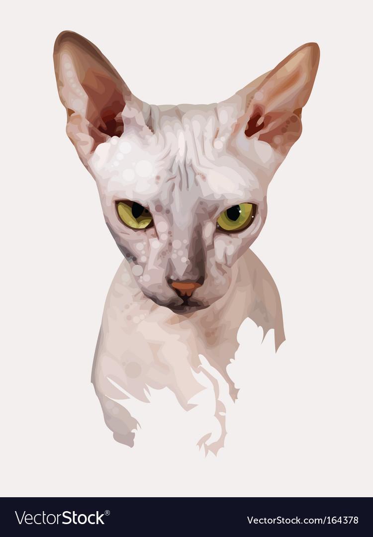 Cat portrait vector | Price: 3 Credit (USD $3)