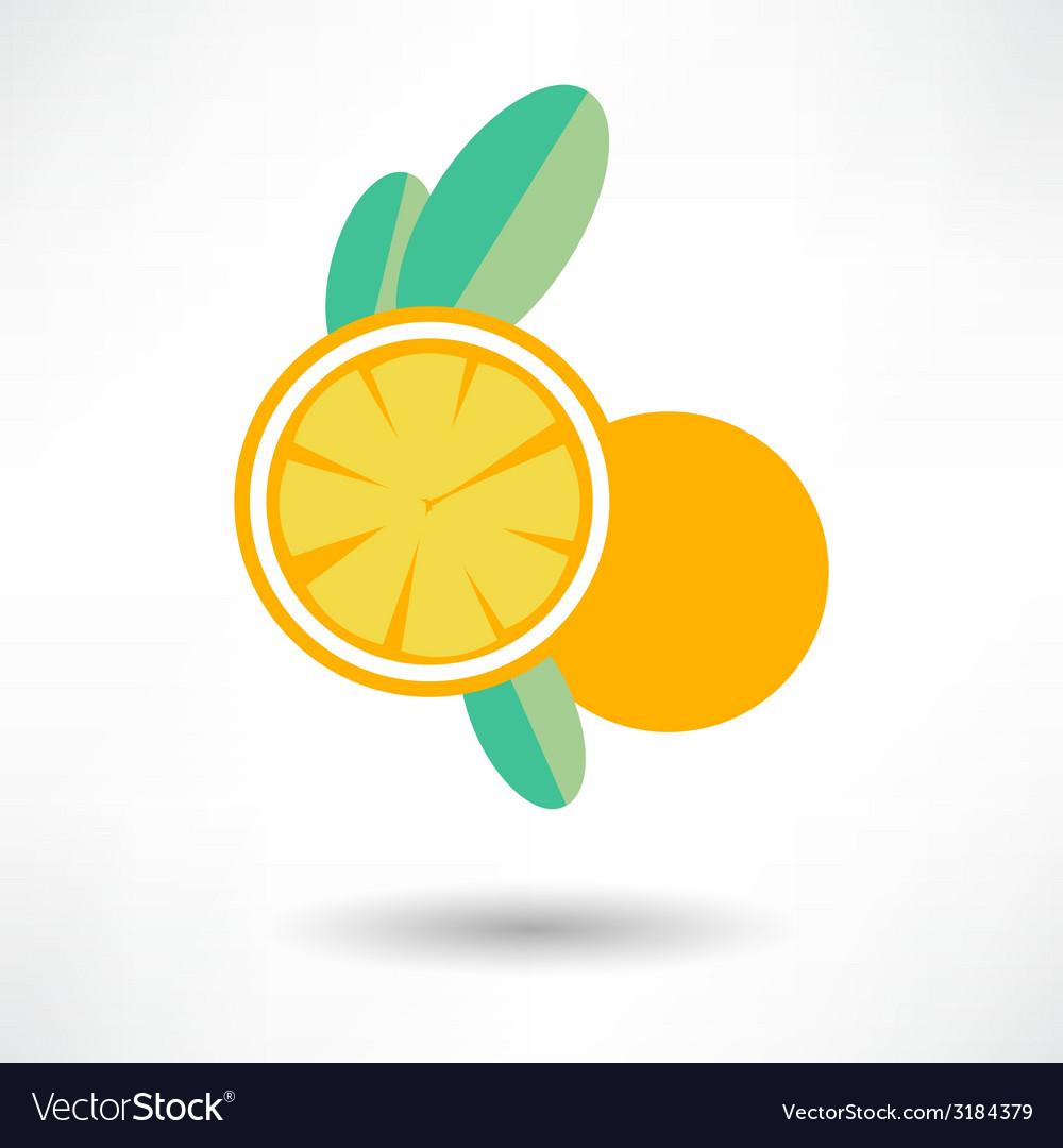 Icon orange fruit isolated on white background vector | Price: 1 Credit (USD $1)