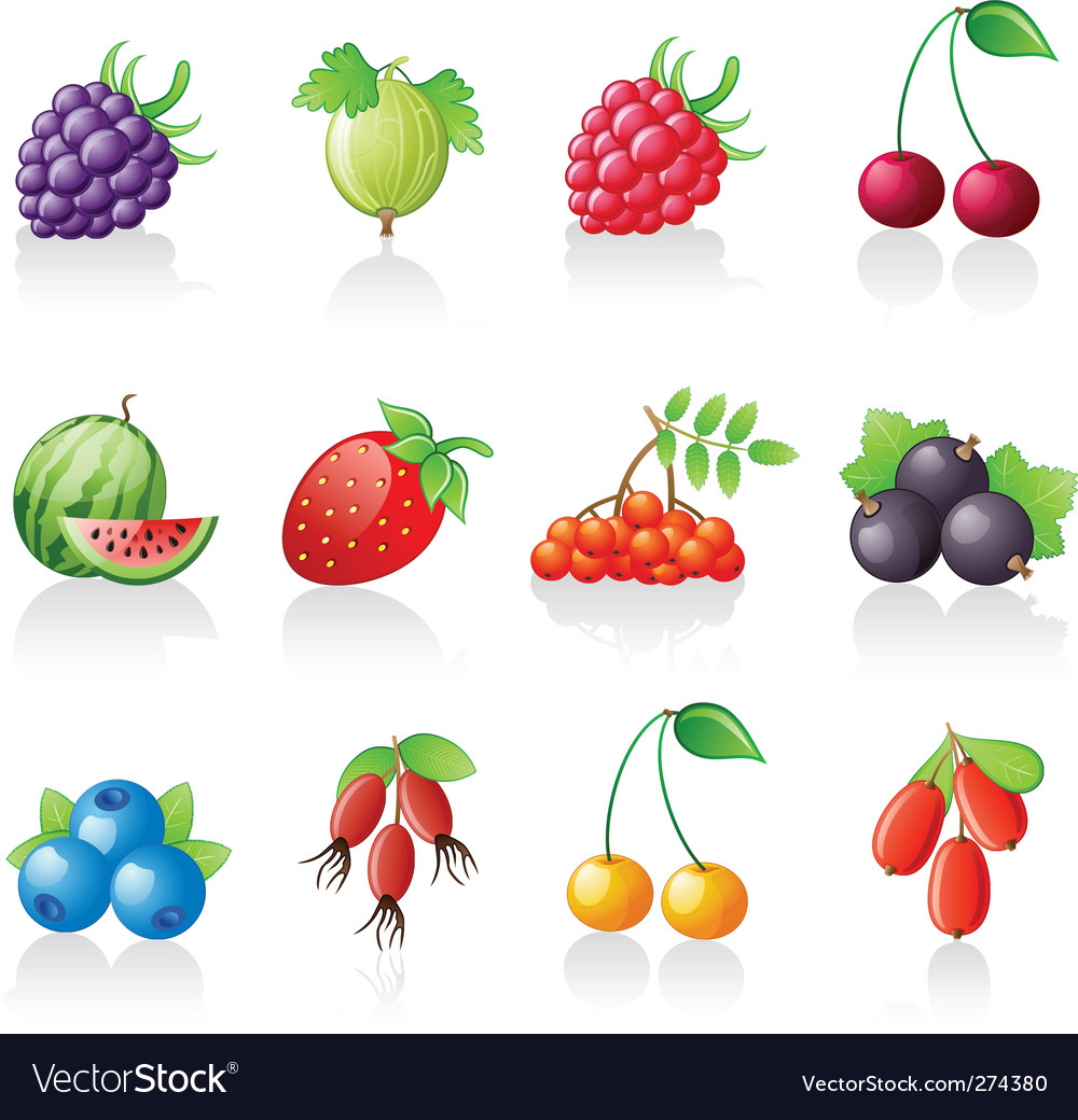 Berries icon set vector | Price: 1 Credit (USD $1)
