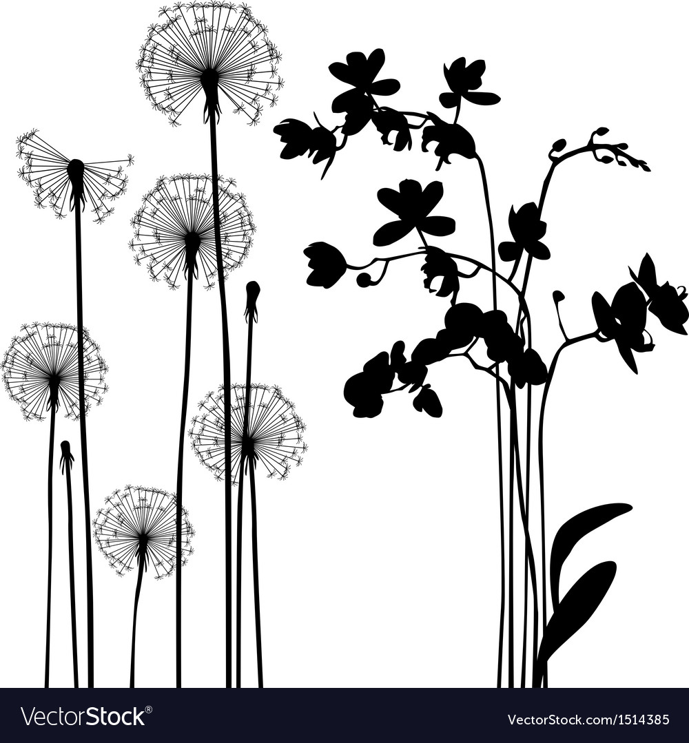 Traced elements - the meadow in summer time vector | Price: 1 Credit (USD $1)