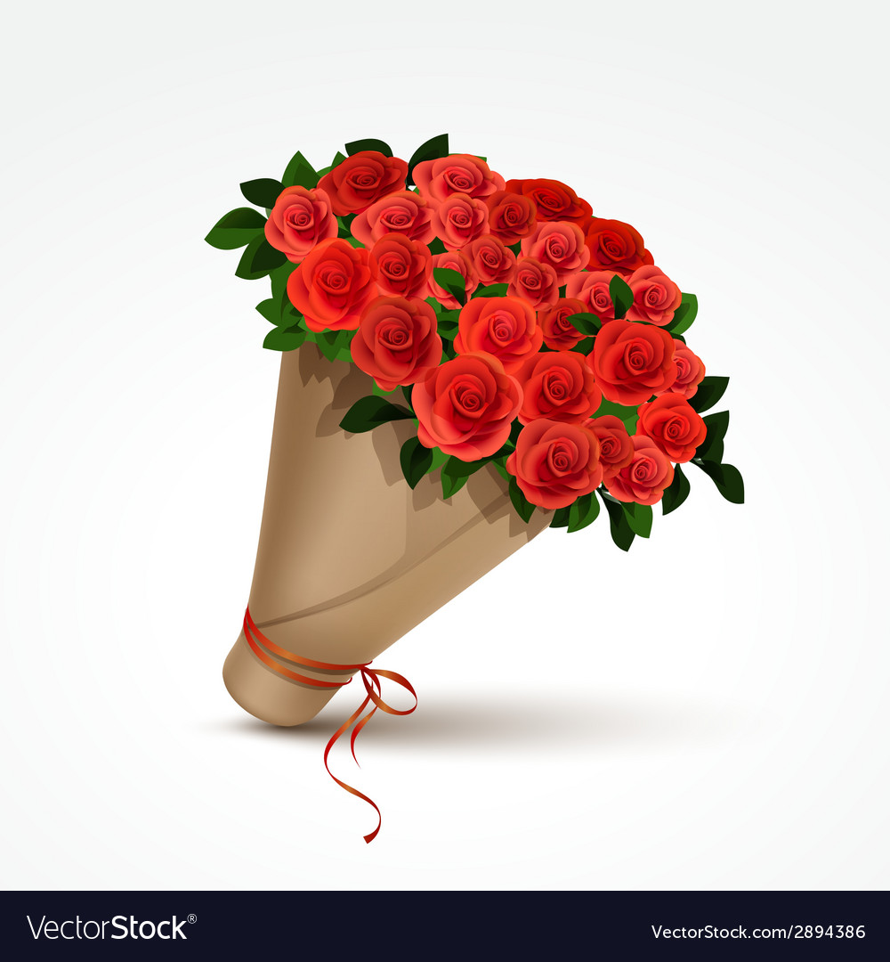 Bouquet of red roses isolated vector | Price: 1 Credit (USD $1)