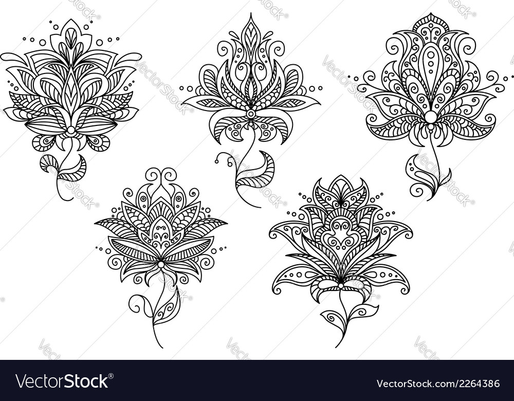 Persian and indian paisley floral elements vector | Price: 1 Credit (USD $1)