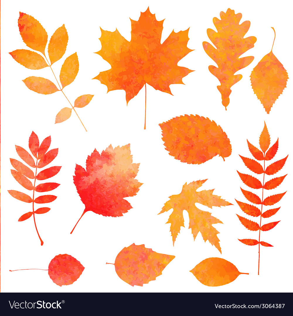 Watercolor collection of beautiful orange autumn vector | Price: 1 Credit (USD $1)