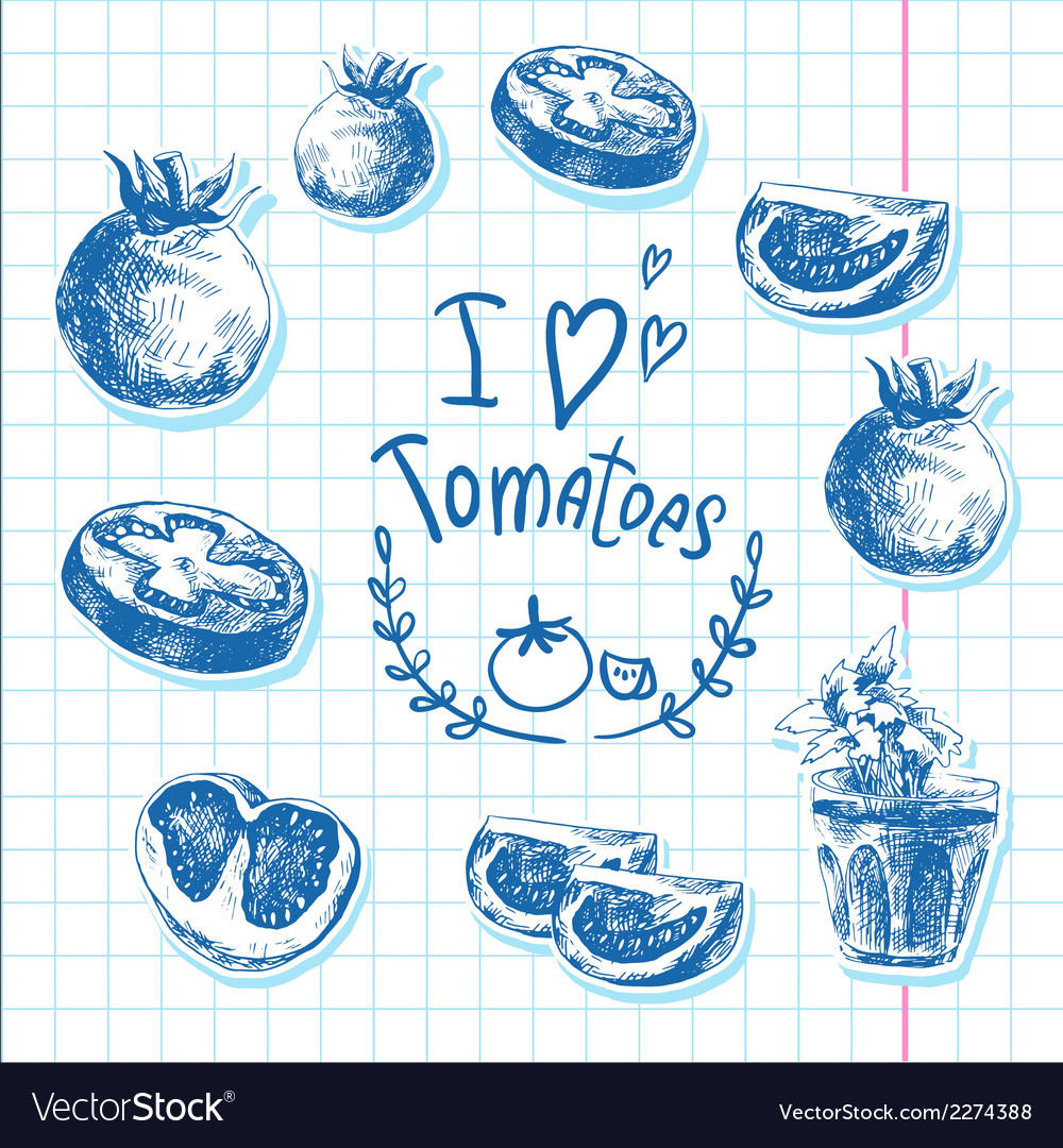 Hand drawn sketch of vegetables tomatoes vector | Price: 1 Credit (USD $1)
