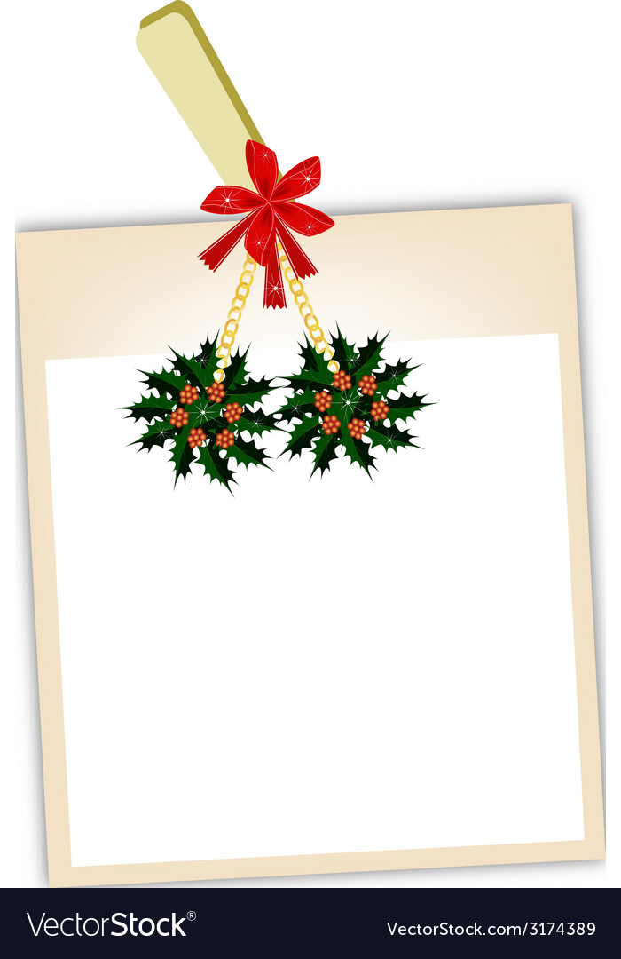 Blank photos with christmas holly vector | Price: 1 Credit (USD $1)