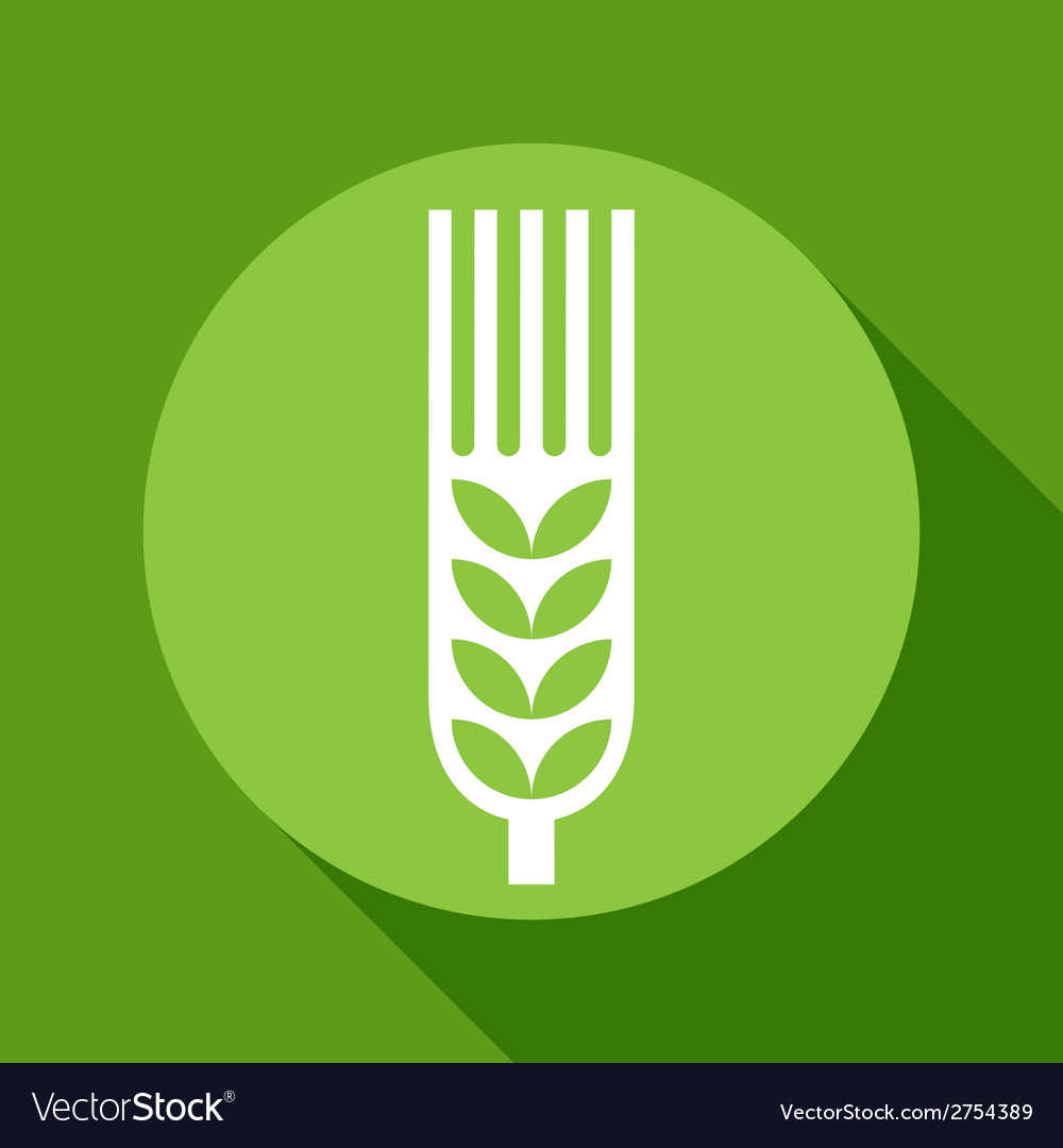 Wheat ear sign vector | Price: 1 Credit (USD $1)